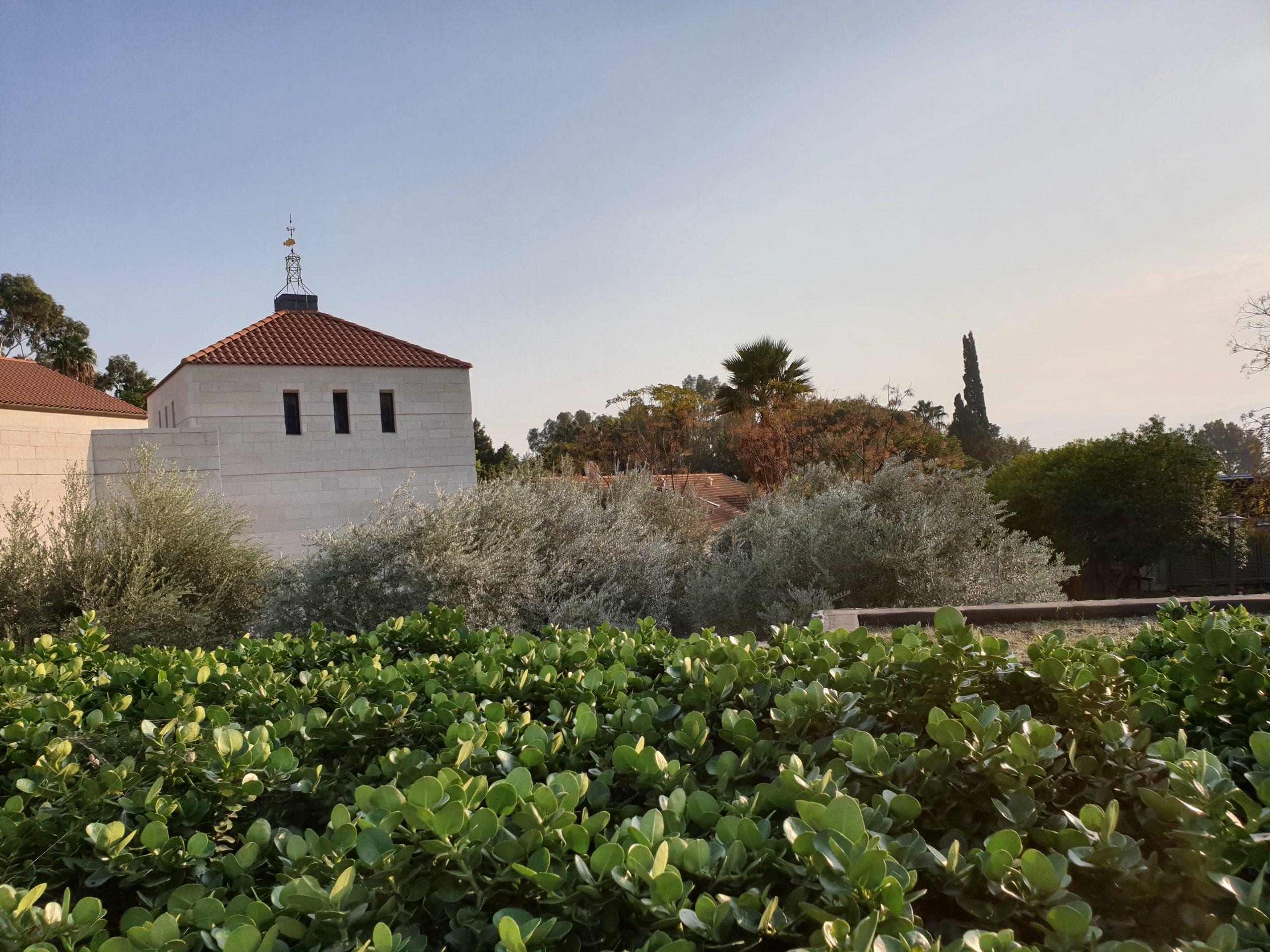 Weingut auf den Golanhöhen